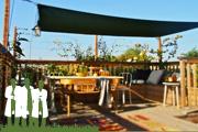 Daktuinen van hovenier , hoveniersbedrijf Diemel Groenvoorzieningen