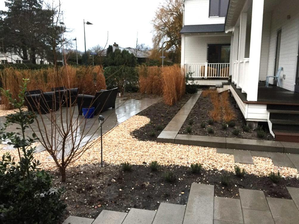 Strakke tuin in Den Haag met weelderige beplanting geïnspireerd door de duinen.