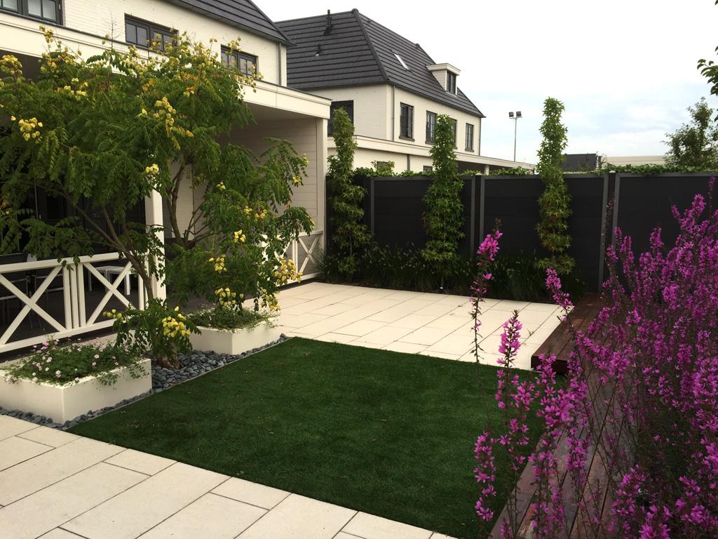 Zicht op veranda in Den haag met strakke tuin, beplant met o.m. Liquidambar, Koelreuteria en Lythrum