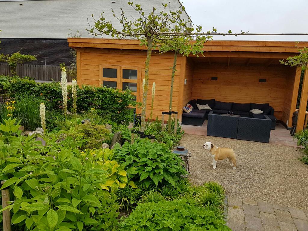 Veranda met schuur in tuin in Den Haag