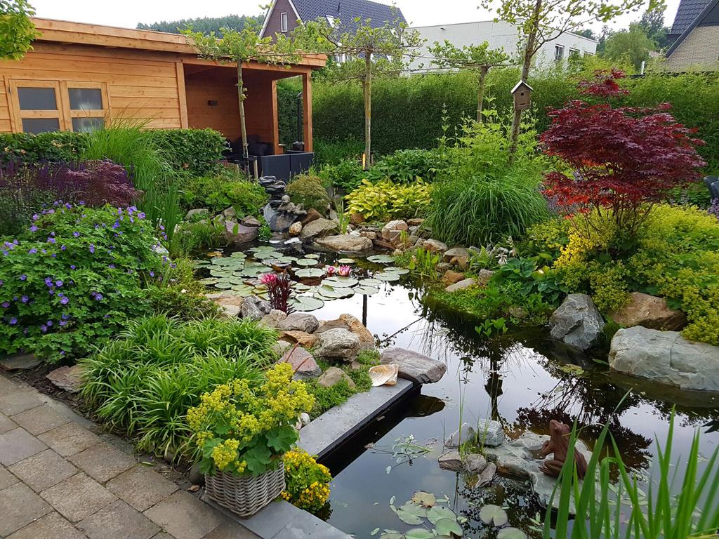 Veranda met schuur in tuin met natuurlijke vijver in Den Haag